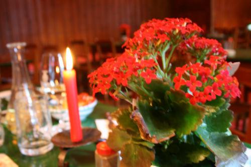 食卓に赤い花
