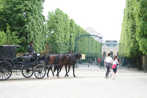 庭園の馬車
