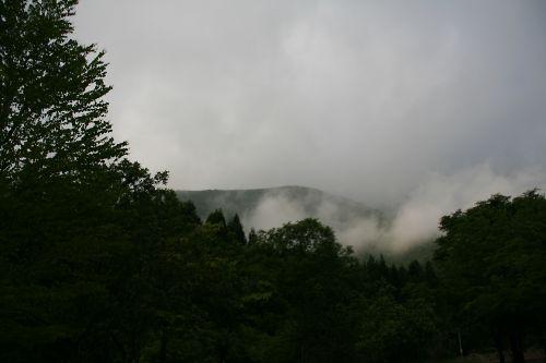 翌朝です。ガスってます。なんせ朝霧ですから
